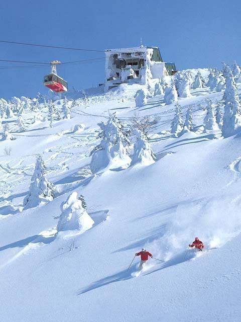 スキー 場 八甲田 八甲田のスキー場と樹氷